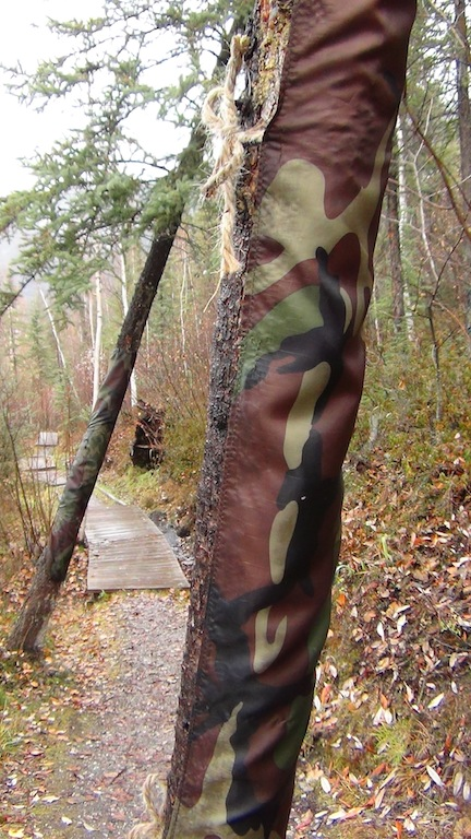 a 9th ave camo path